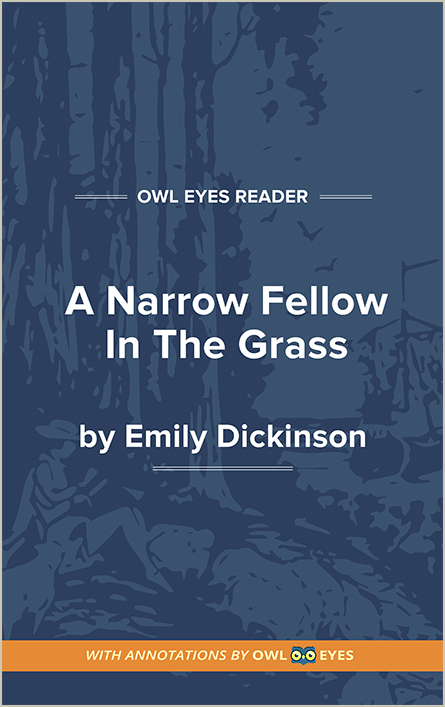 A Narrow Fellow in the Grass Cover Image