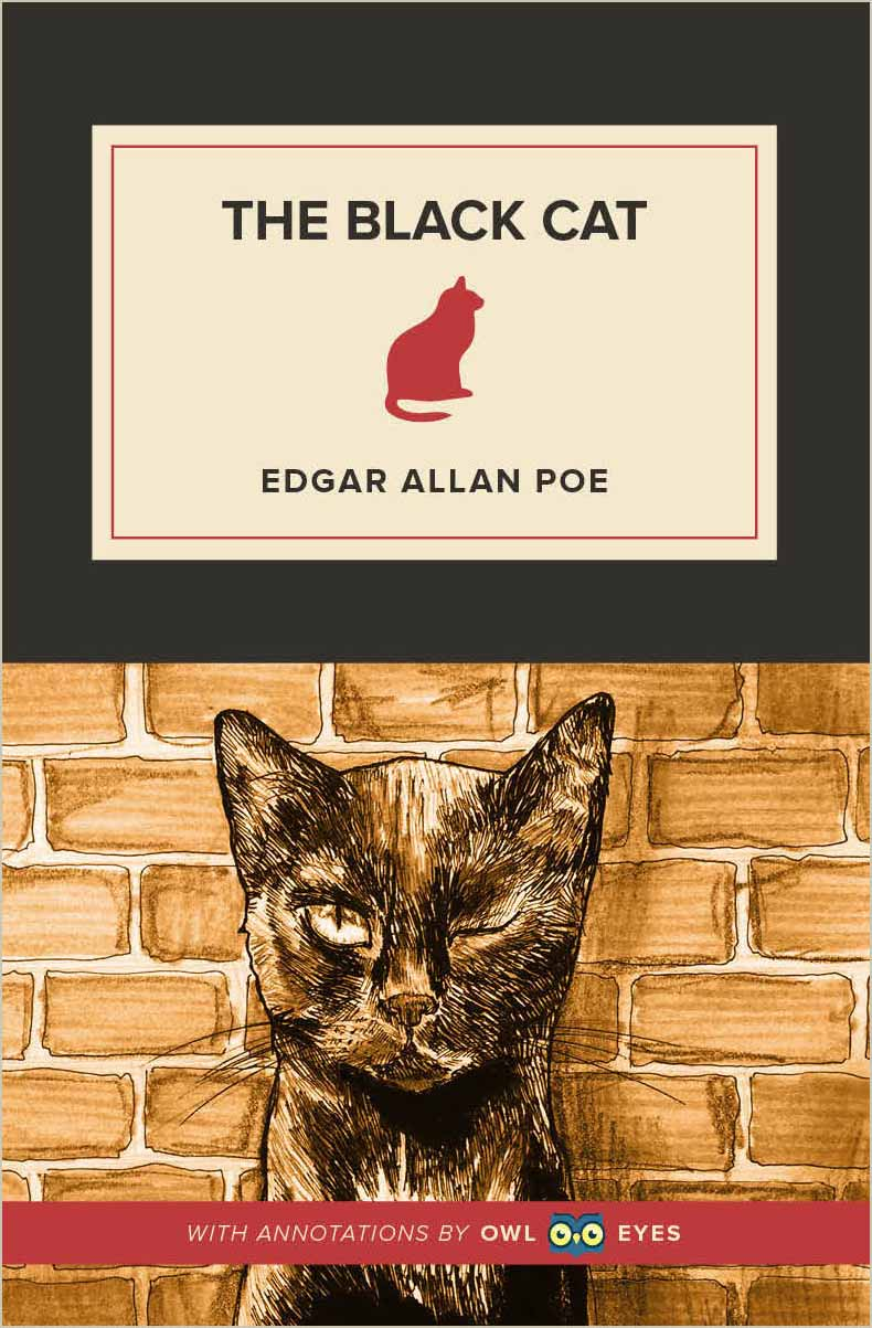The Black Cat Cover Image