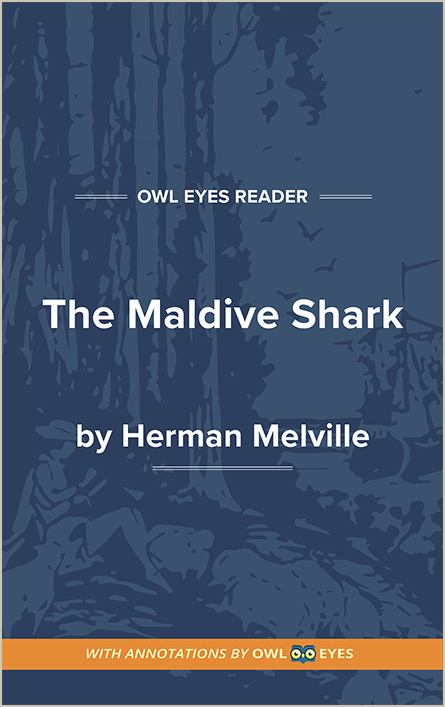 The Maldive Shark Cover Image
