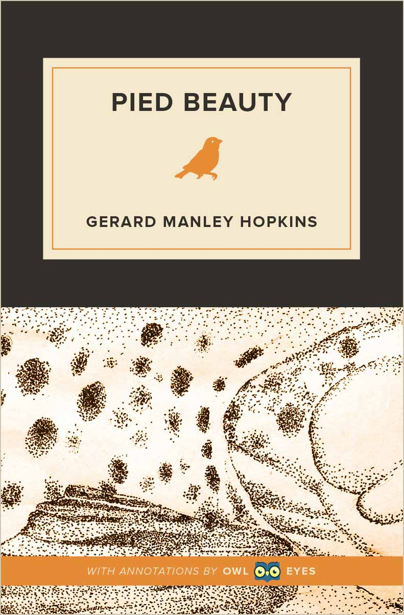 Pied Beauty Cover Image